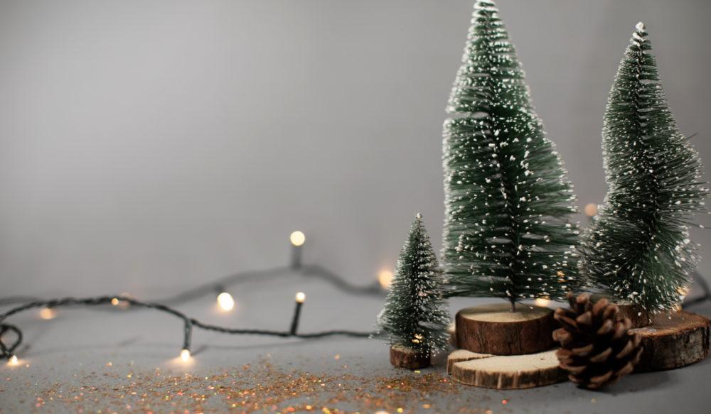 Julehilsen fra Kari Sollien